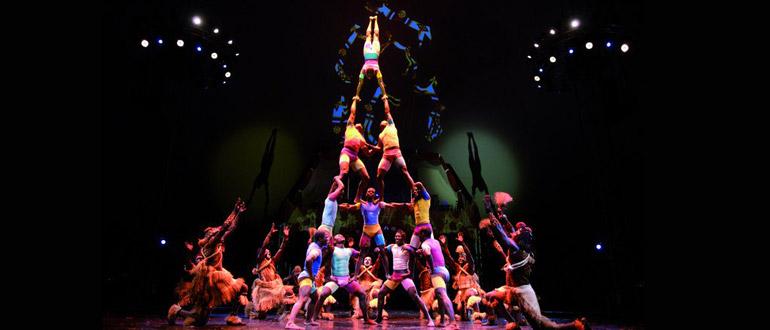 Cirque Zuma Zuma concert